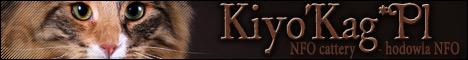 Kiyo'Kag*Pl